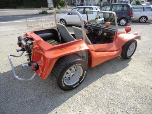 Buggy maplex 02